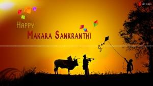 Sankranthi-2014 (1)